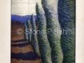 cypress-through-screen-sfona-pelah