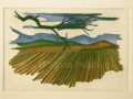 ploughed field by sfona pelah