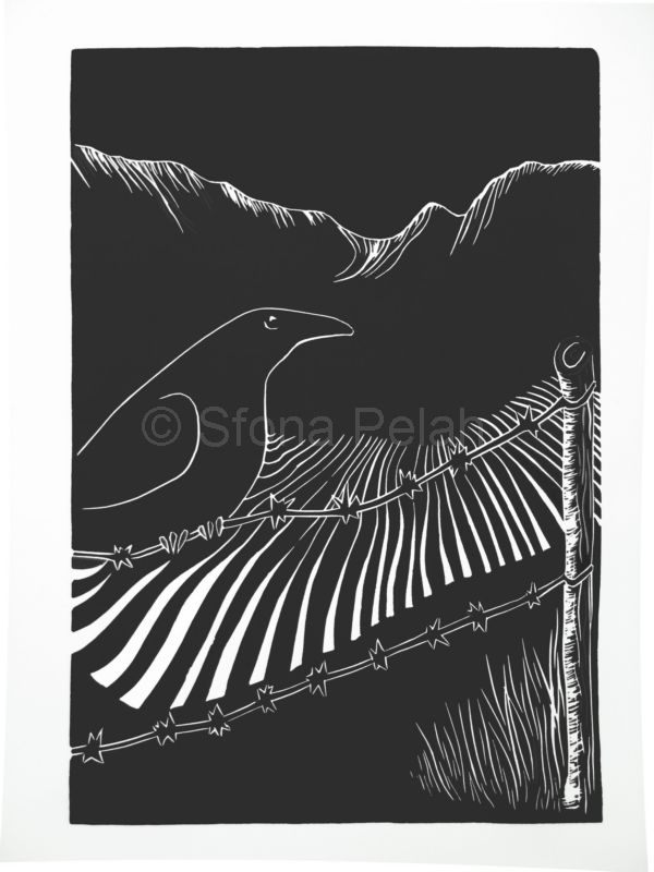 """Untitled"" (raven)"